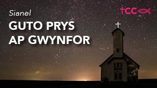 Guto Prys ap Gwynfor